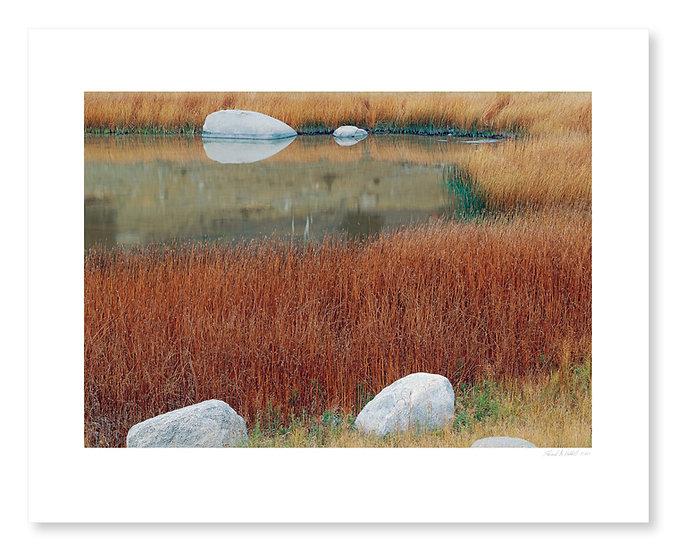 Pond & Rocks, Lamar Valley