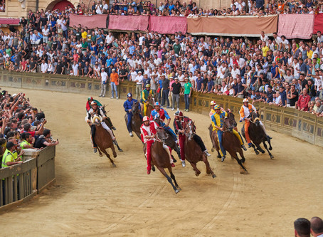 Palio, August 2018 - Lupa wins! (And we were there.)
