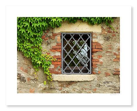 Window, Castello Banfi