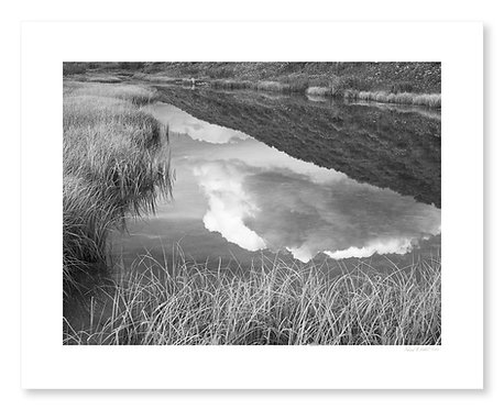 Pond and Cloud Reflection