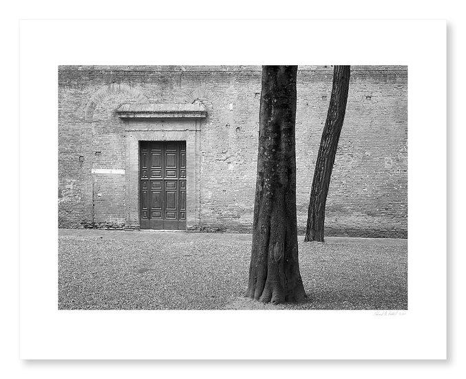Door & Trees, Siena