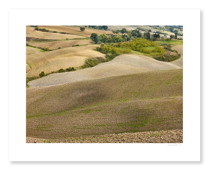 Fields Near Monticchiello
