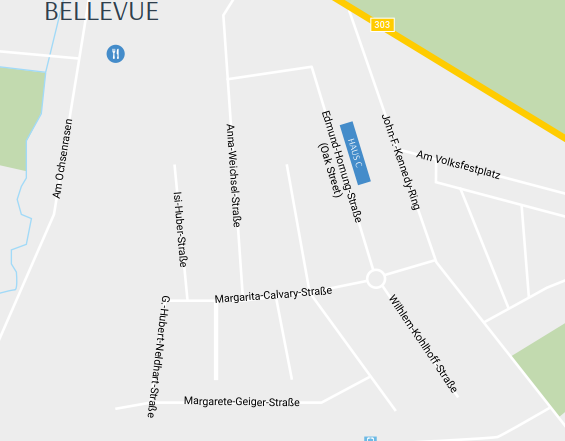 Areal Lage Bellevue.PNG