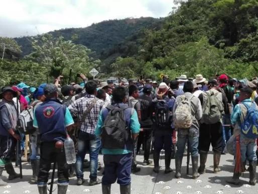 ONU alertó del incremento del 193% de los desplazamientos forzados en Colombia