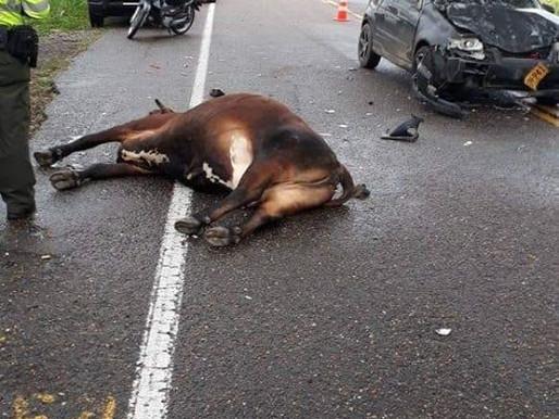 Un Accidente de transito se registró el sábado en la vía Mariquita - Honda