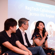 80RR LC19D1 - Regtech Panel