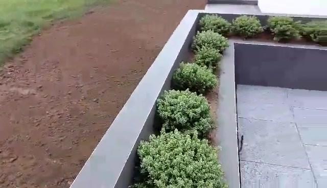 video-1552598063.mp4