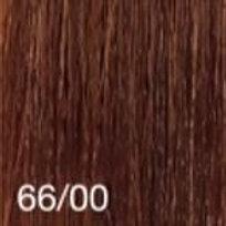 66/00