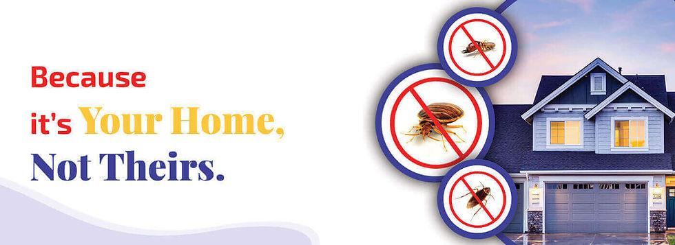 pest-control-service-mumbai.jpg