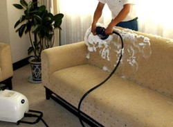 sofa shampooing