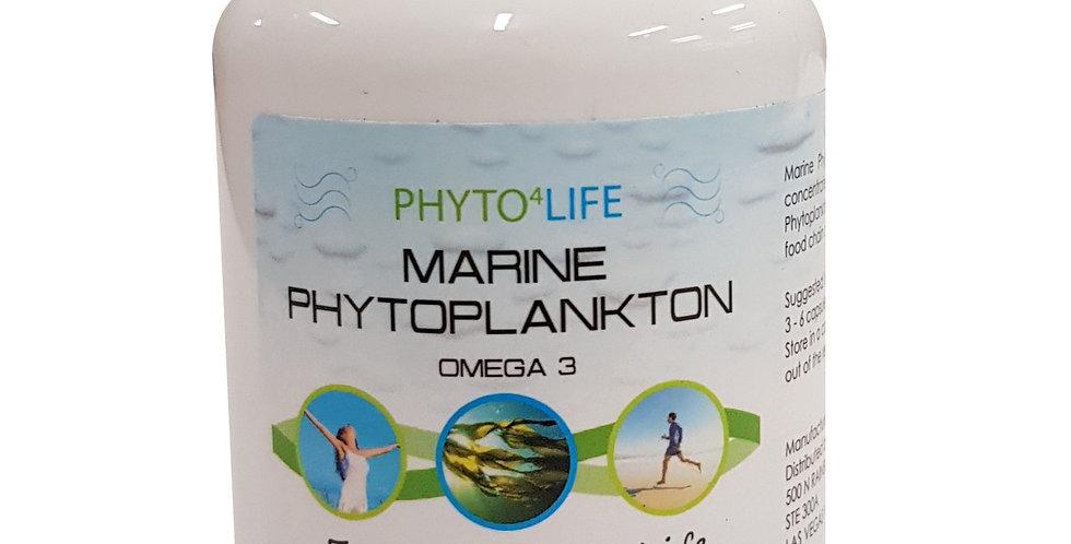 Mr. Ros - Marine Phytoplankton