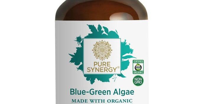 Pure Synergy Blue-Green Algae
