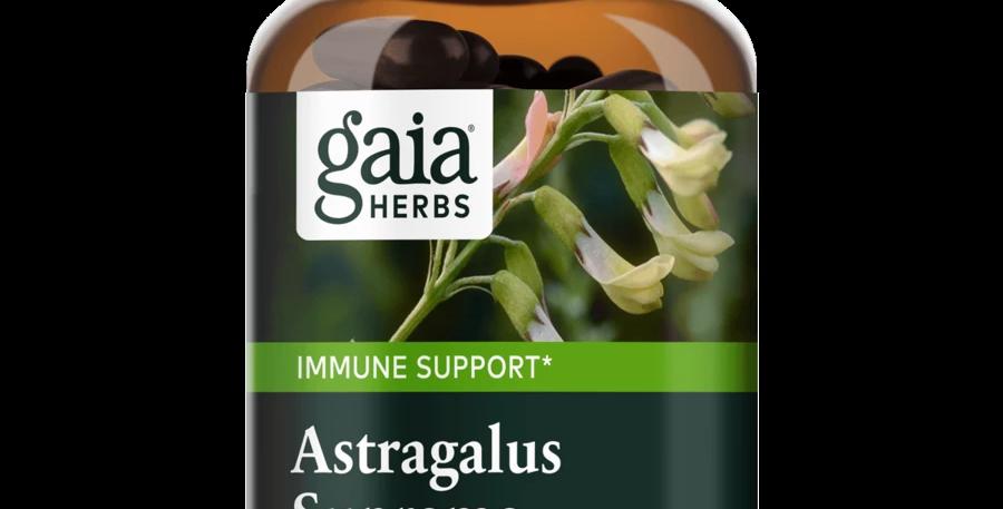 Gaia - Astragalus Supreme