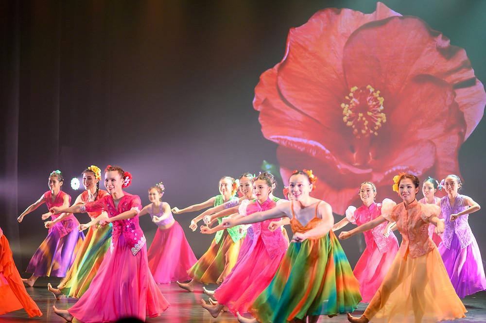 Dancer in 'Hibiscus--The Homeland'