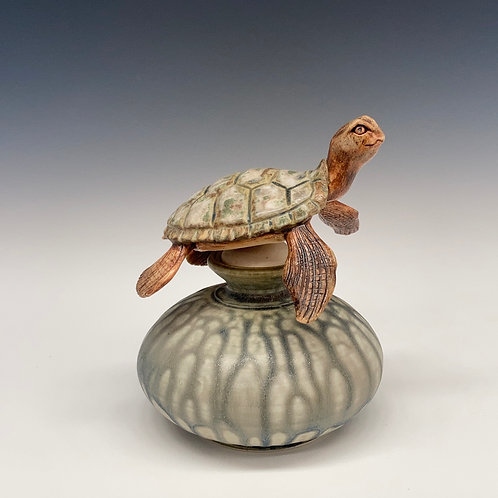 Sea Turtle Bottle