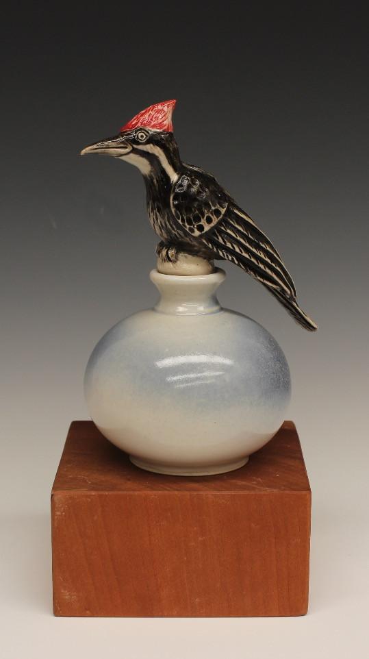 Pileated Woodpecker 2017