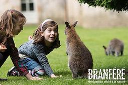 Branféré-Nourissage wallabies-BD©M Gross