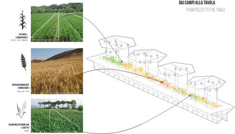 tt fields to table.jpg