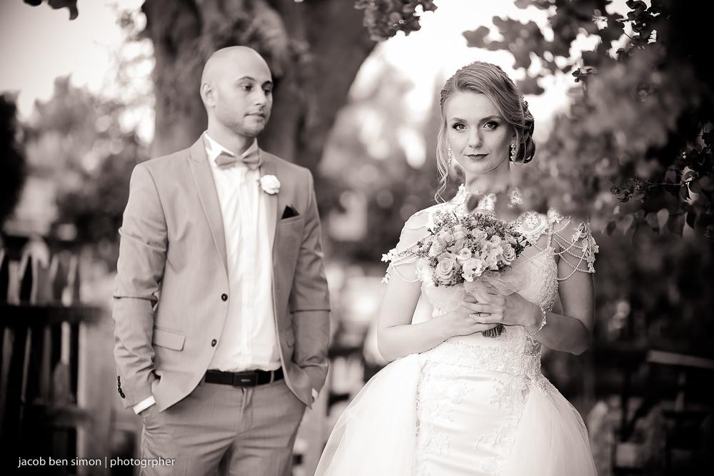 צלם חתונות מקצועי