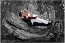 צלם חתונות בשרון