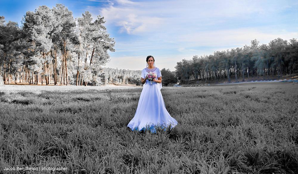 צלם אירועים, צלם חתונות, בשרון