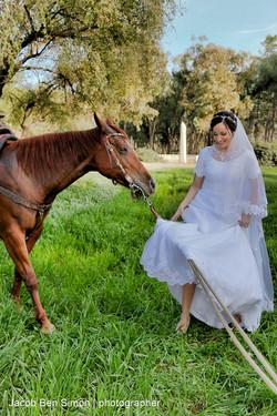 צילום חתונה מאמר