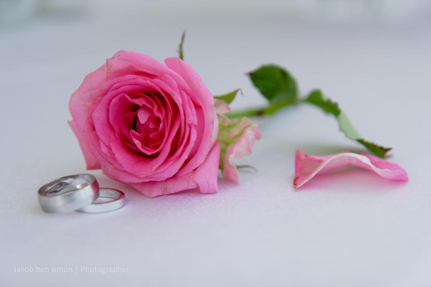 צילום חתונה, צילום חתונות