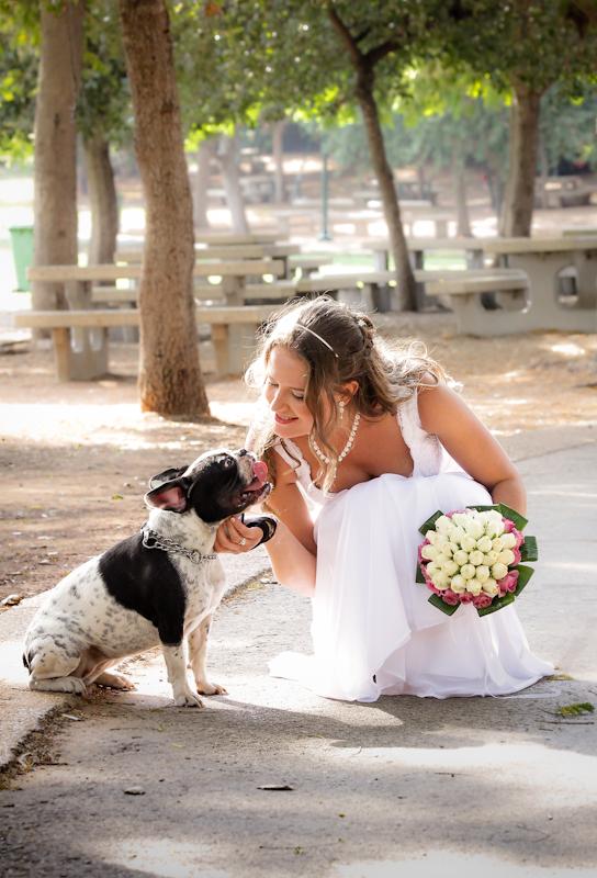 צילום חתונה, צלם חתונות