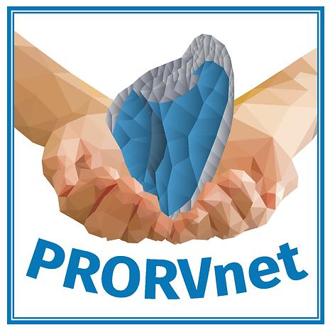 RV logo (1).png