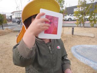 🌈カラーセロハン虫眼鏡🔍 オレンジ組1歳児