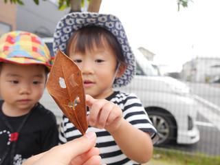落ち葉拾い🍂 オレンジ組1歳児