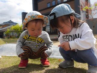 虫探し🐜・石ころ集め✨オレンジ組1歳児