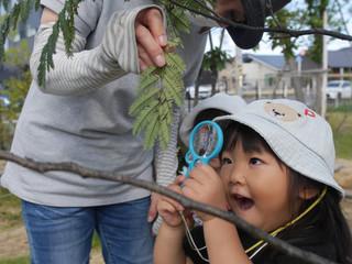虫眼鏡🔍 オレンジ組2歳児