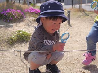 観察あそび🔎✨ オレンジ組2歳児