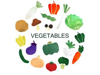 子どもはなぜ野菜が苦手??
