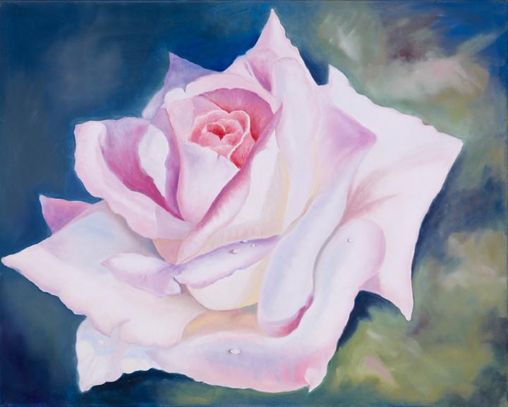 Creme rose