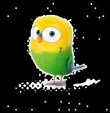 BIRD_edited.png