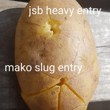 at44 5x30m mopane potato entry.jpg