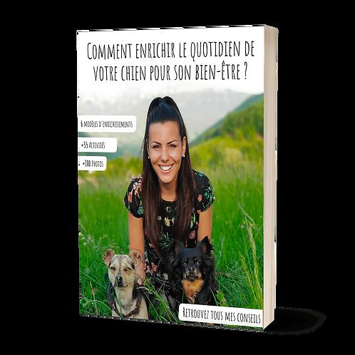 Comment enrichir le quotidien de votre chien ?