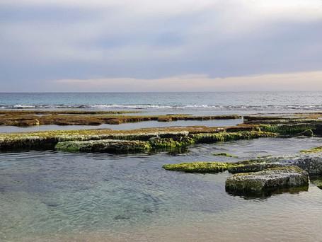 Seaside Watsu I & II courses - July 2020