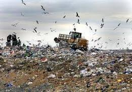 Çöp alanlarına Yakınlık