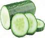 cucumber 1.png