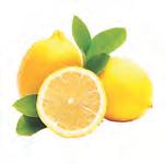 lemon 12.png