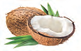 coconut 1.png