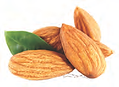 swet almond 1.png