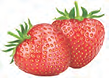 strawberry 1.png