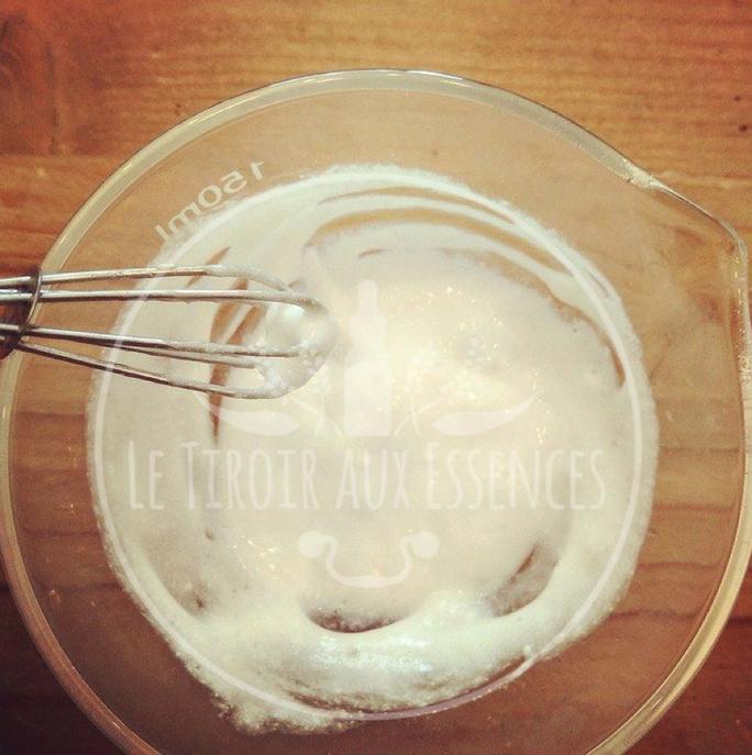 CHEVEUX : Masque-Sérum adoucissant au gel d'Aloe vera, lait & huile de Noix de coco pour che