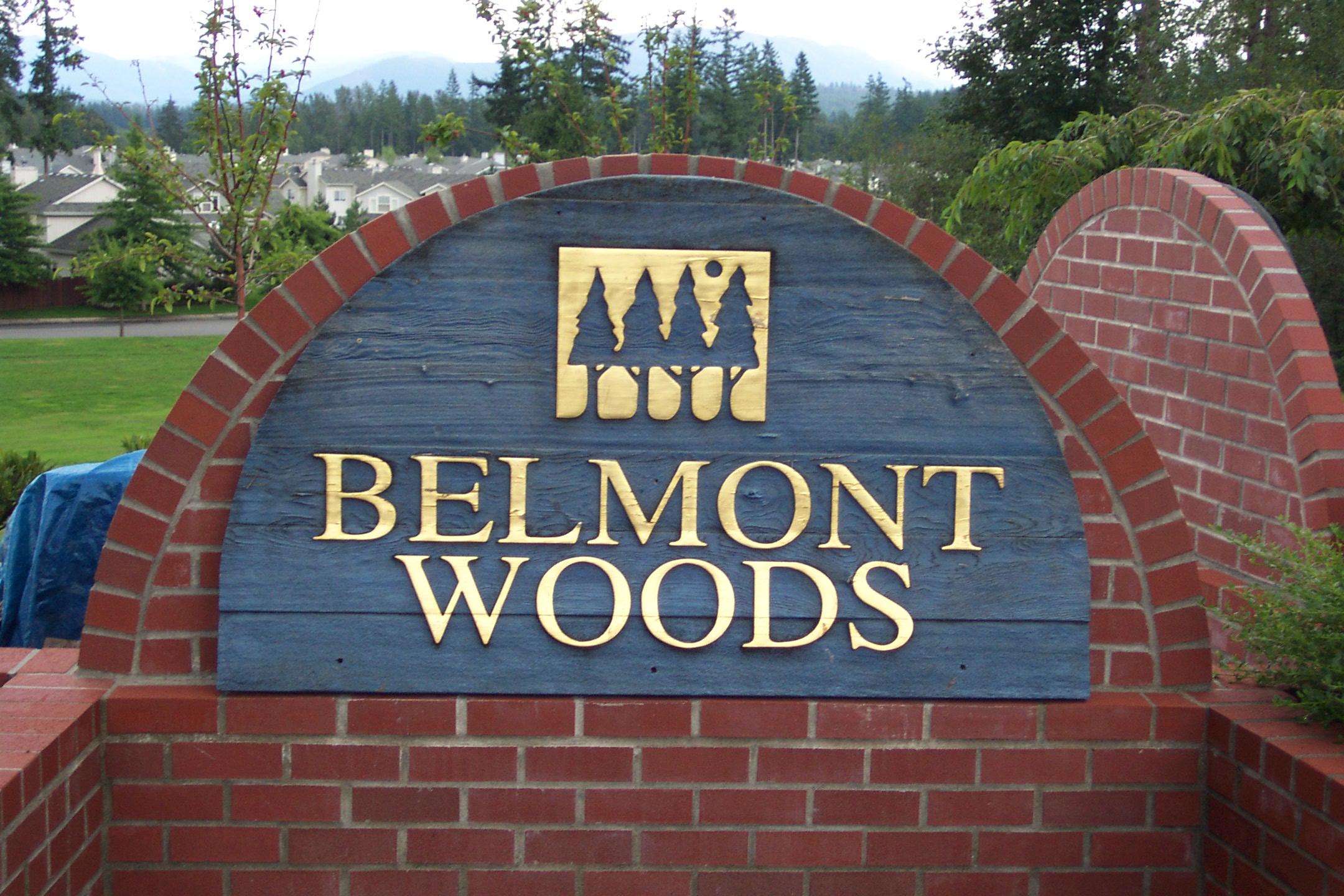 Belmont woods 009