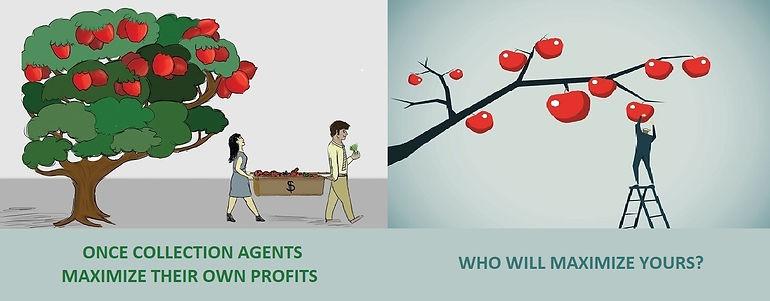 High Hanging Fruit (Lg).jpg