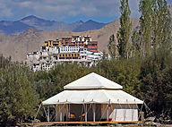 Times, Ladakh, Kashmir, Ultimate Camp, India,